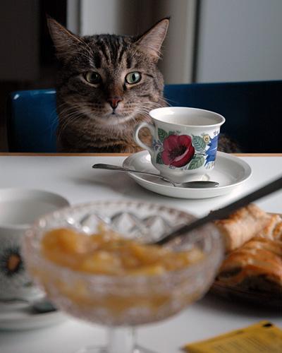 Kuisman kanssa kahvipöydässä
