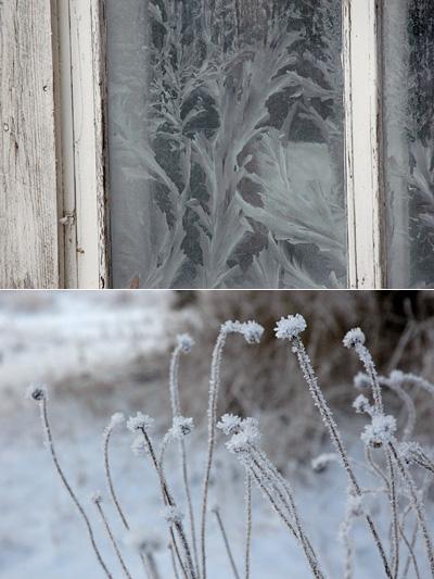 Huurretta ikkunassa