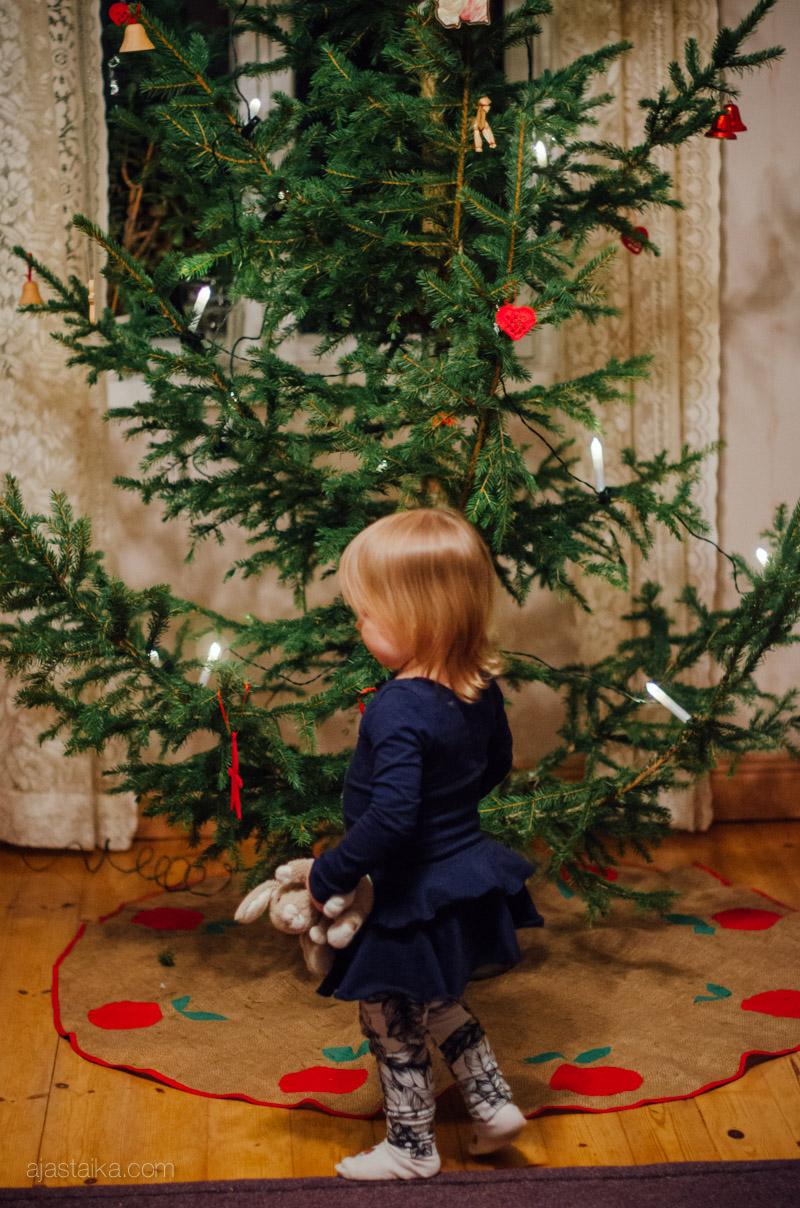 Mini, pupu ja joulukuusi