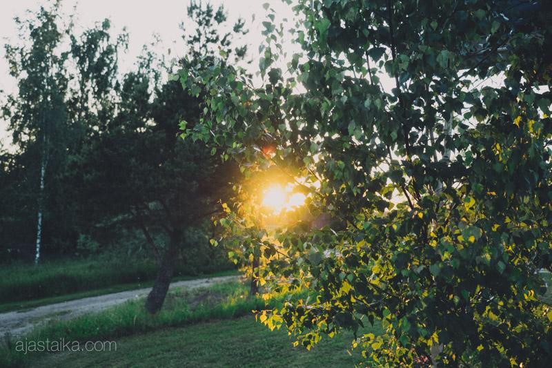Keskikesän aurinko