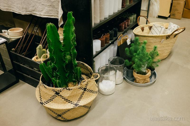 Vihreää riisikorissa