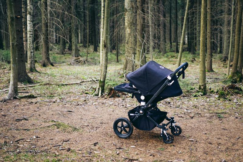 Camit metsässä