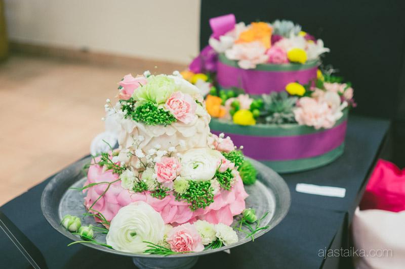 Pari kakkua lisää