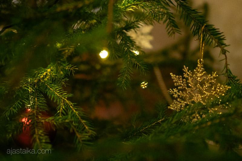 Joulukuusessa