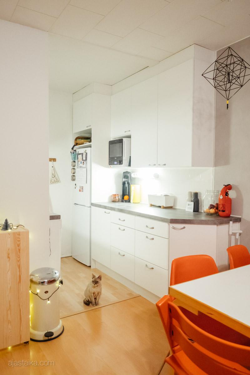 Keittiö ja ruokapöytä
