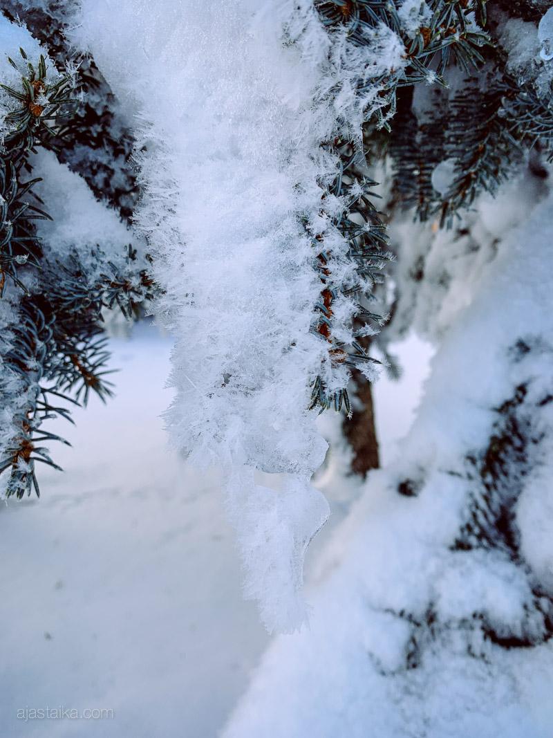 Lunta lumen päälle